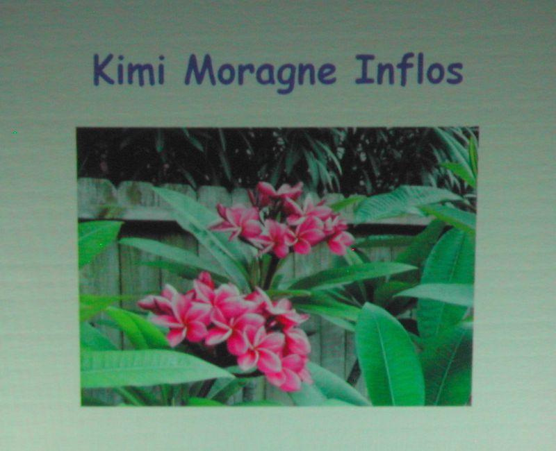 Kimi Moragne Inflos