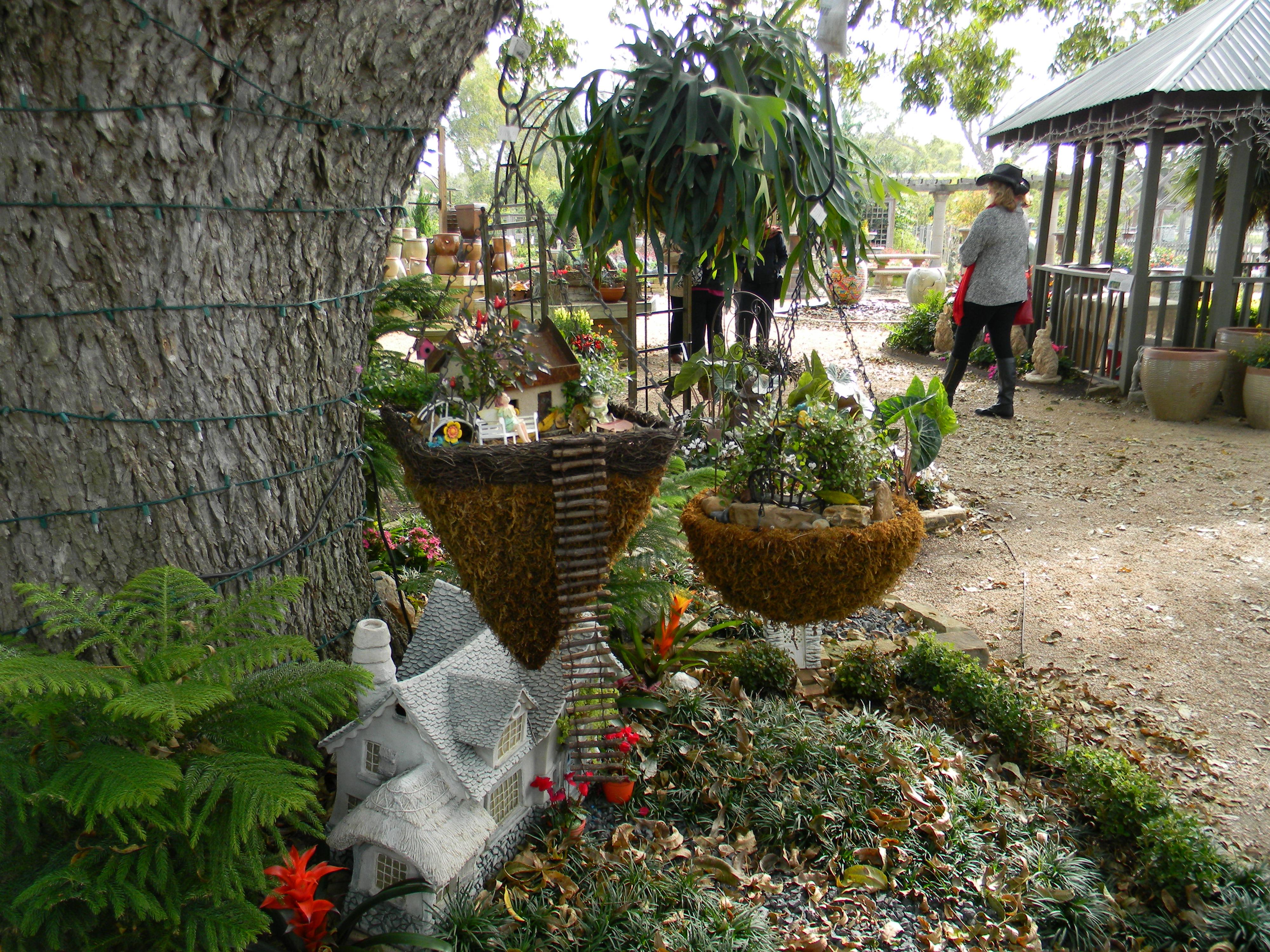 Quail Valley Garden Club: November 2013